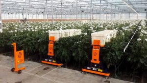 AGV Erntewagen Gartenbaumaschinen