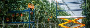Start your crop rotation well prepared!